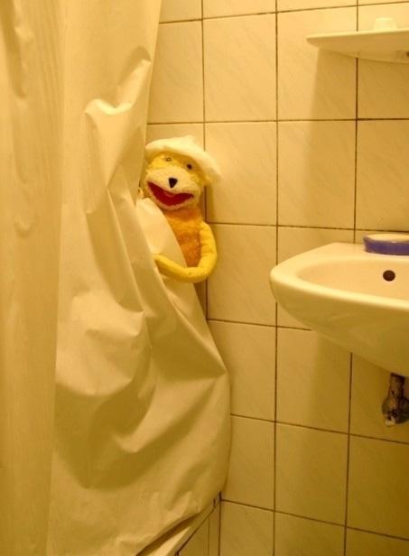 fe-shower.jpg