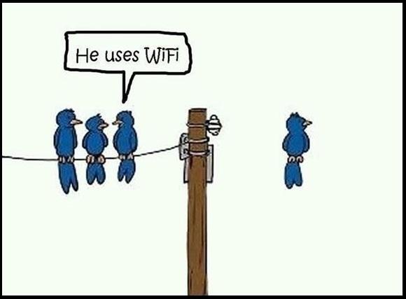 He-Uses-Wifi-Funny-Technology-Birds-Cartoon.jpg
