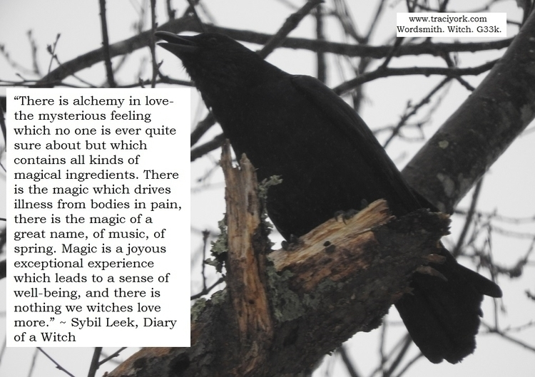 Crow with Sybil Leek quote.jpg