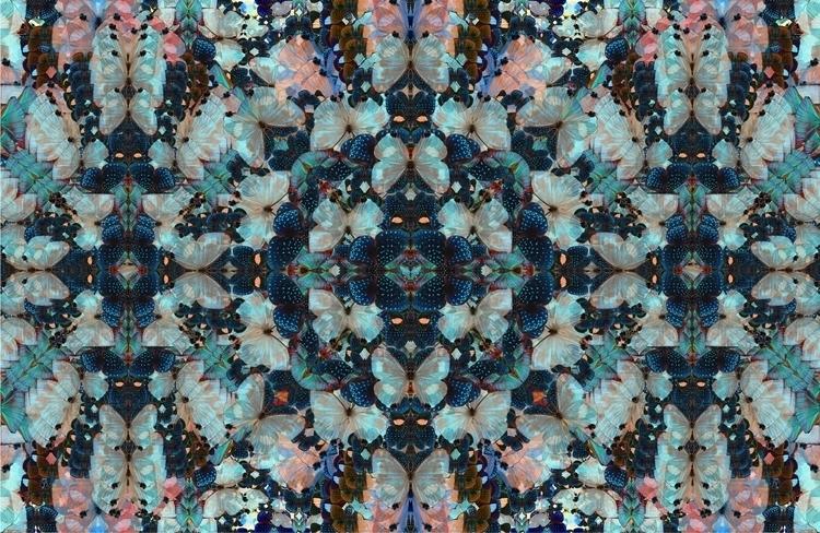 butterflydesignN10.jpg