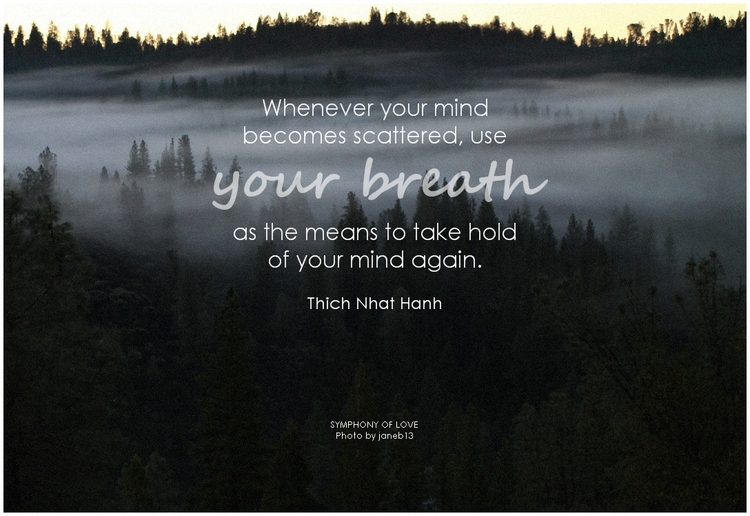Thich Nhat Hanh Whenever your mind becomes scattered, use your breath as the means to take hold of your mind again.png