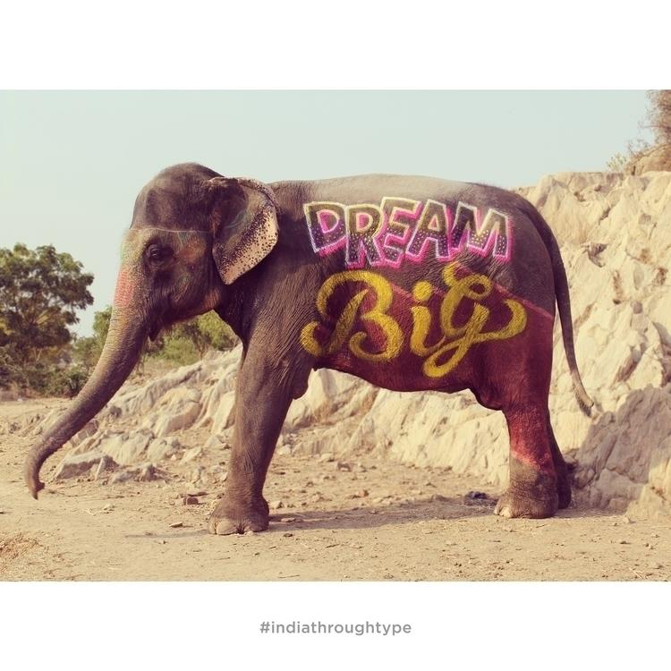 Elephant-type--final