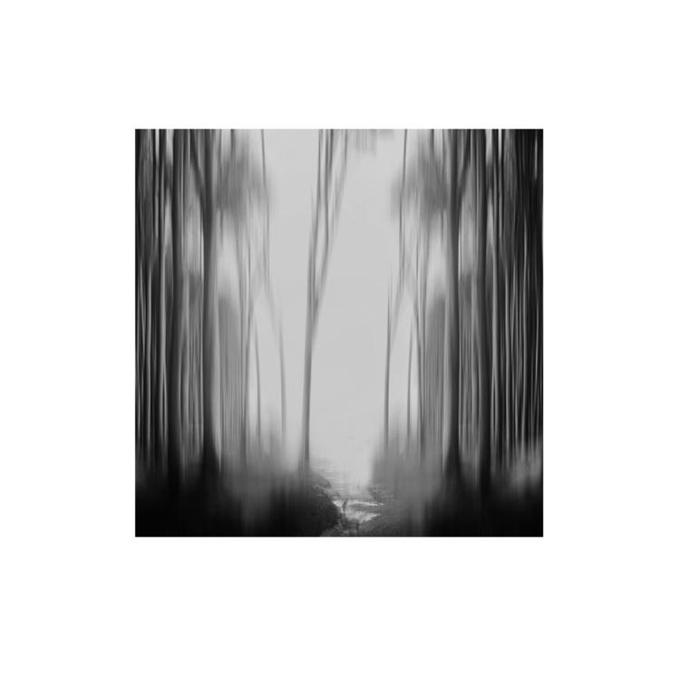 bomen2.1.jpg