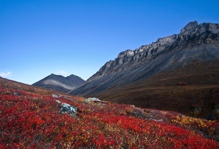 Slopes of Blueberry Mountain.jpg