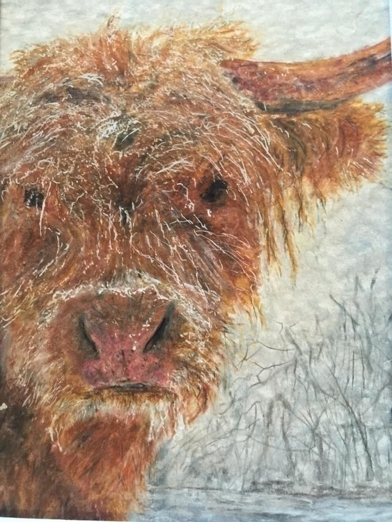 Gerry DeWitt - crop - Colored Pencil of Bjorn - 1395994_1722206521392777_3309727865779024370_n.jpg