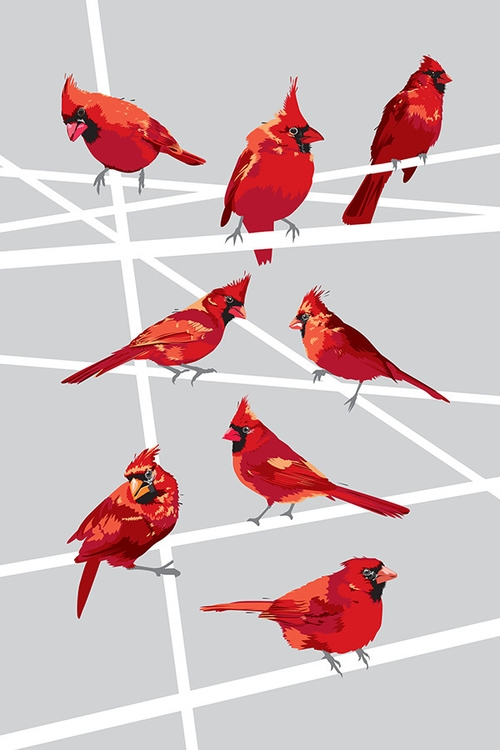 UPSO_Cardinals2_0000_NL600px_1024x1024.png