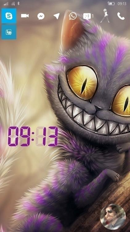 gato alice.jpg