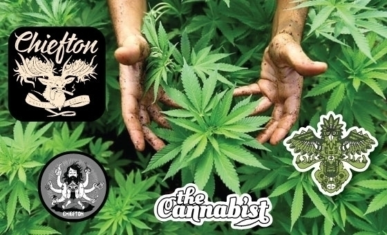 StickerGiant-Cannabist-Chiefton-Supply-Stickers.jpg