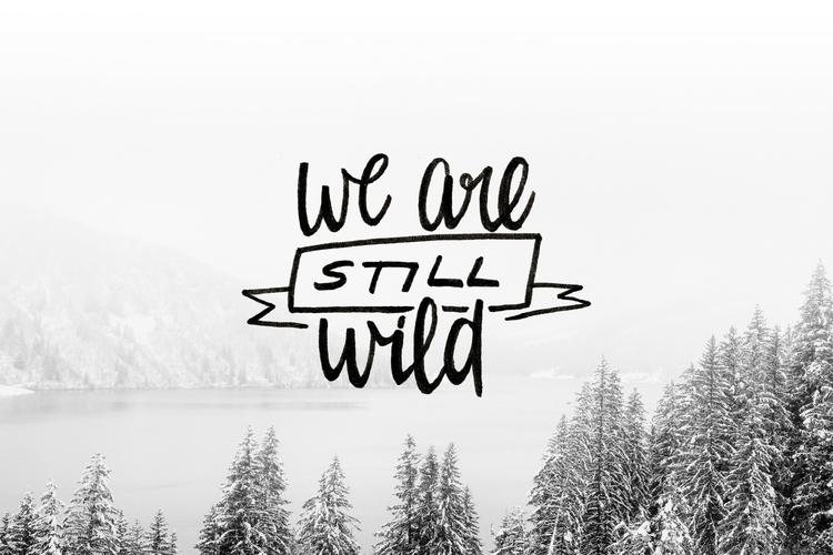 We are still wild photo banner.jpg