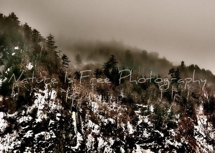 """The human spirit places nature - natureisfree   ello"