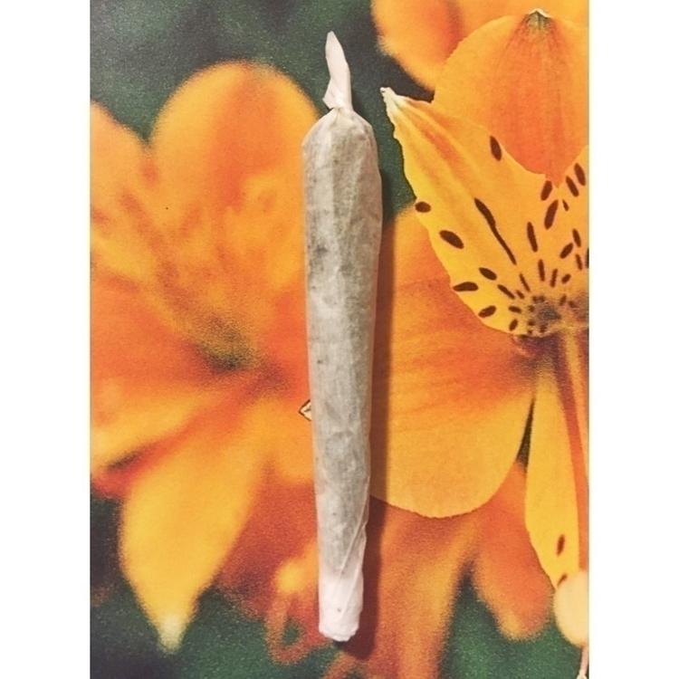 Portrait J marijuana cannabis w - jphoto_project | ello