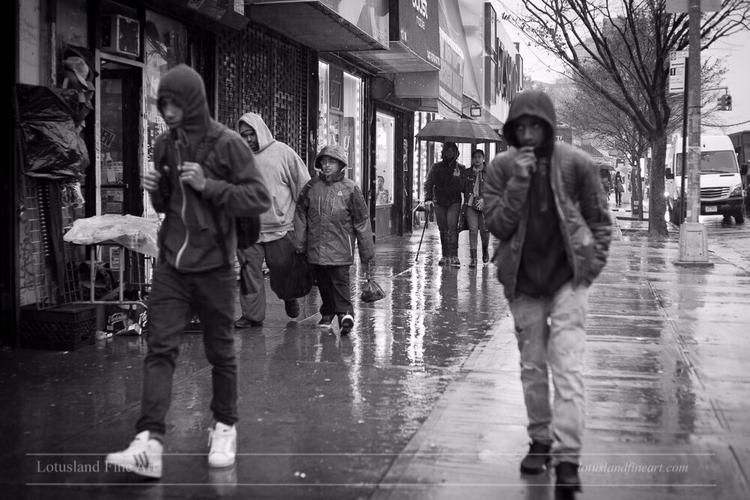 30 November 2016. Bronx, New Yo - wlotus | ello