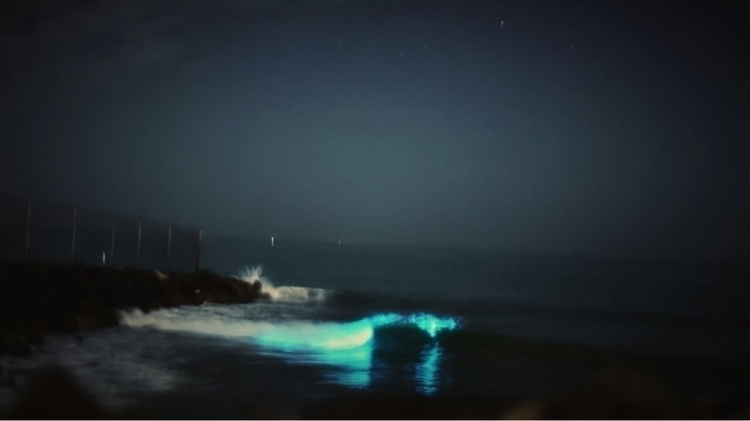 Few days waves neon night, sigh - pankunkat | ello
