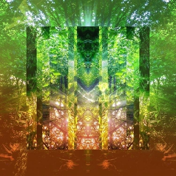 straight lines nature... glich  - neztha | ello