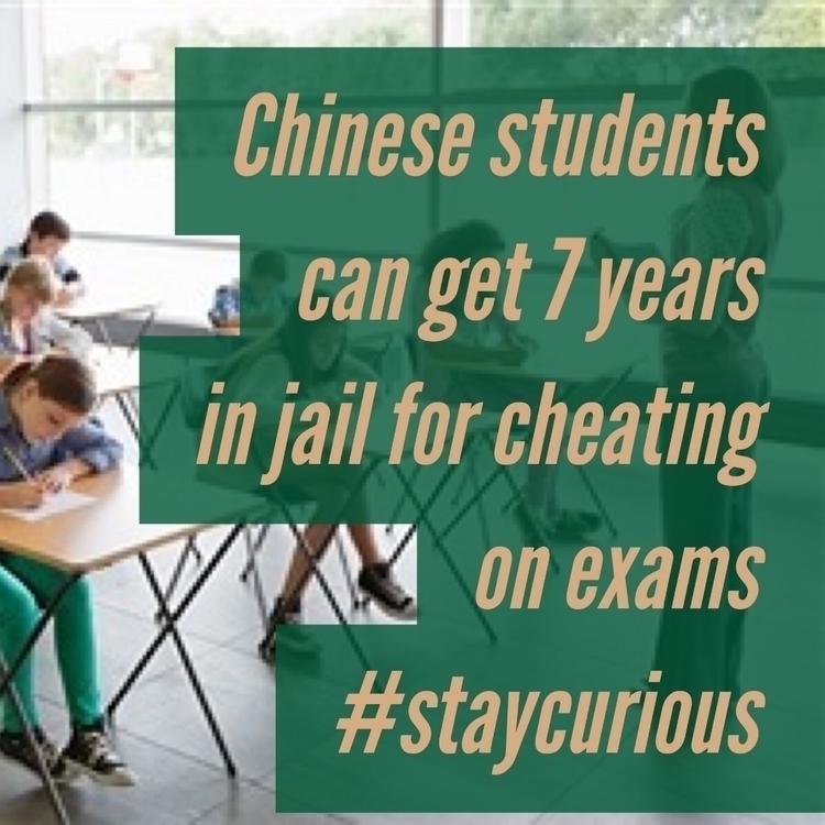 Chinese students 7 years jail c - curionic | ello