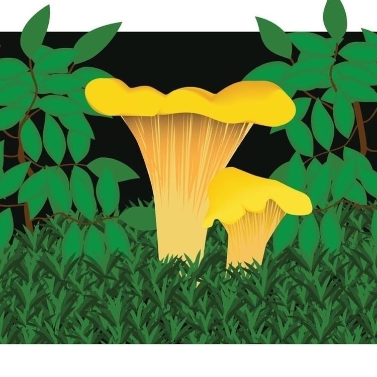 mushroom digital art digitalill - _ieke   ello
