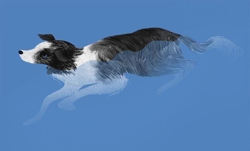 swim pup elloillustration elloa - nicolexu | ello