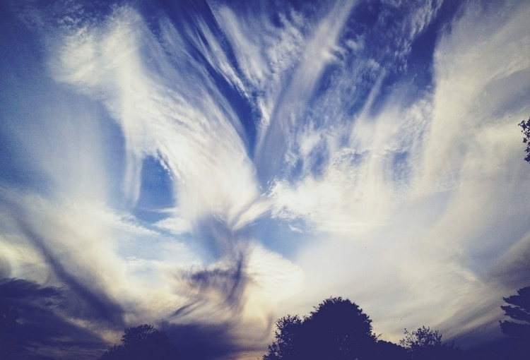 Clouds Sky Sunset Trees - j_smith | ello