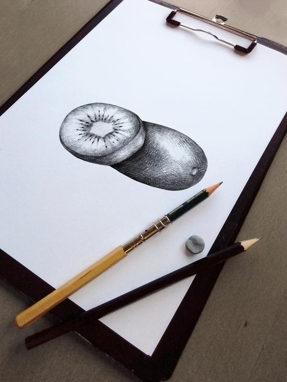 Kiwi illustration illustrated s - nantia | ello