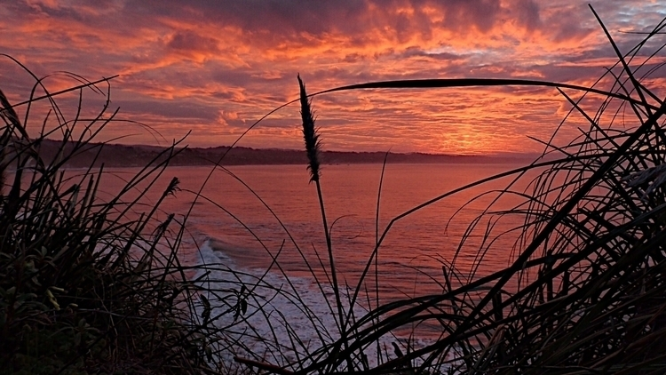 Monterey Bay sunrise - davemrus | ello