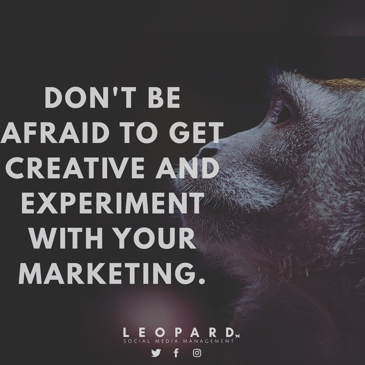 Experiment marketing... | work  - medialeopard | ello