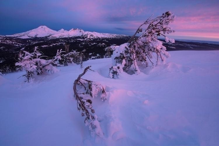 cold, steep snowshoe hike start - skyfolk   ello
