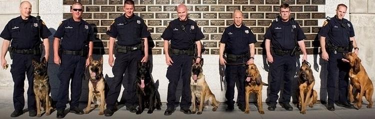 Visit site information K9 Polic - policek9dogsforsale | ello