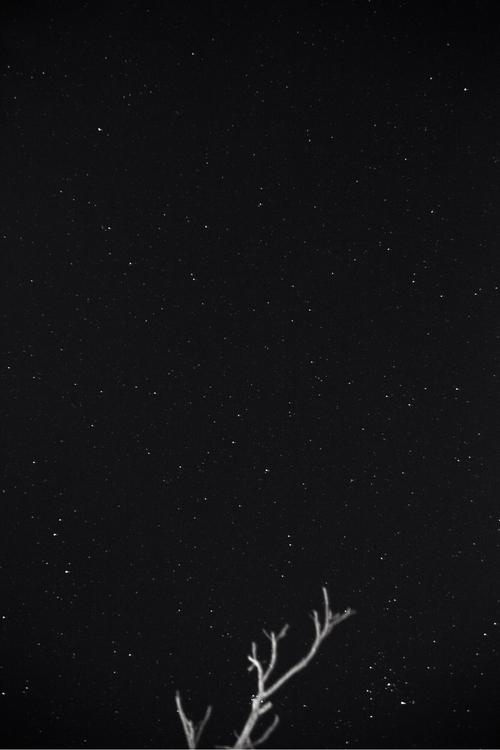 pedroescobar Post 01 Feb 2017 01:04:48 UTC | ello