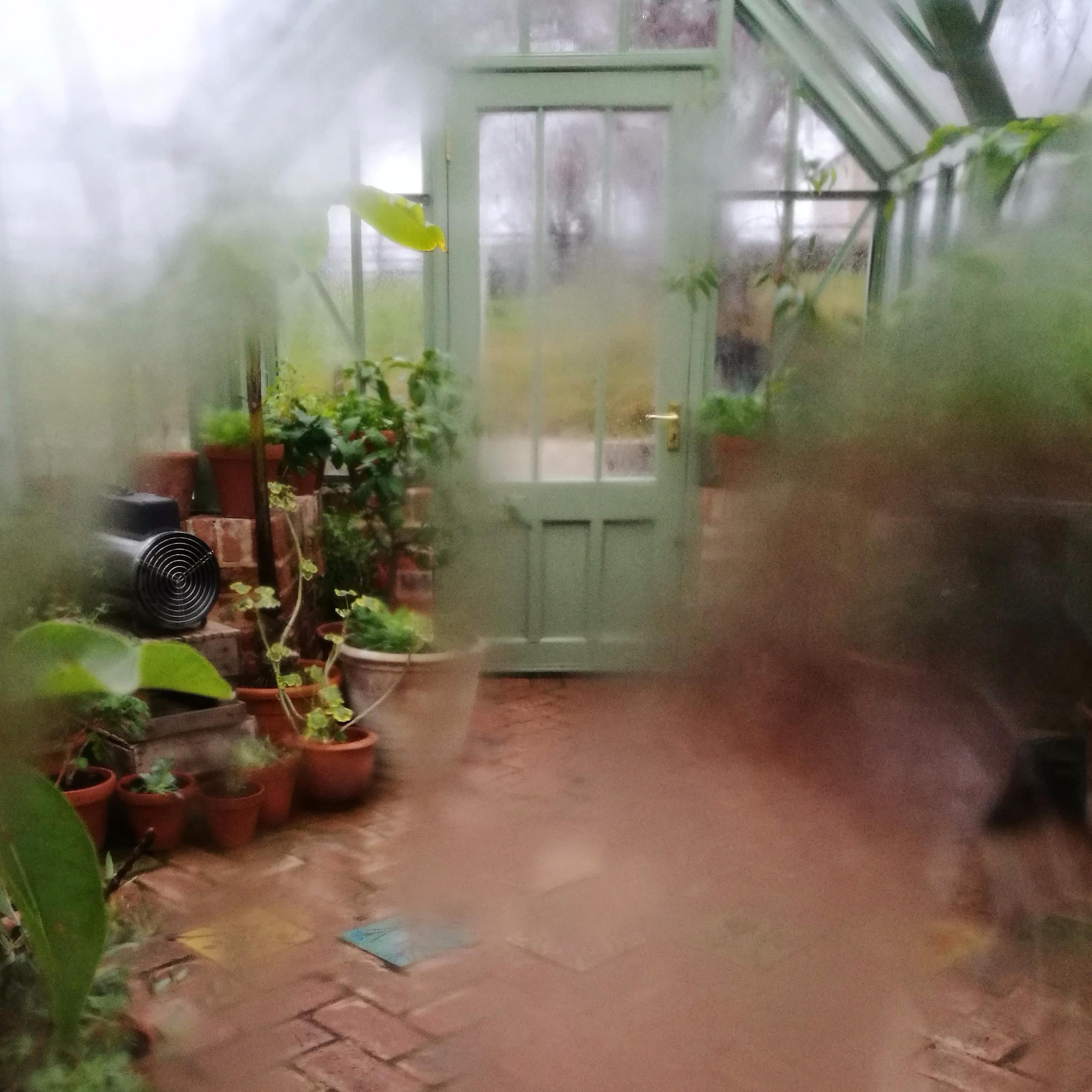 rain streaked windows greenhous - estelleclarke | ello