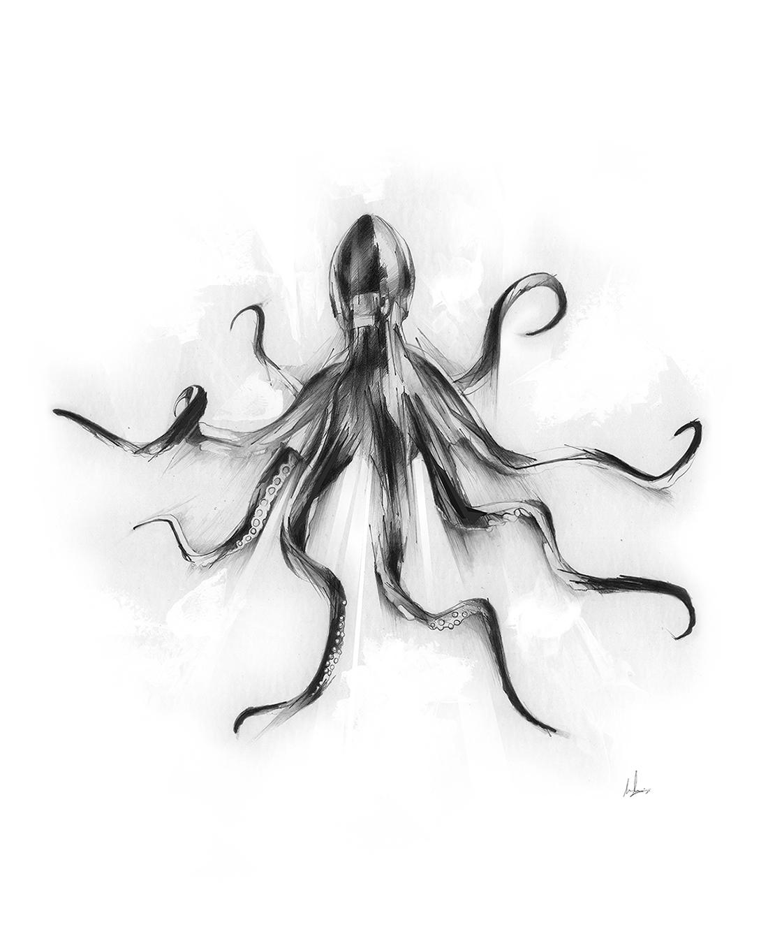 King octopus - alexismarcou | ello