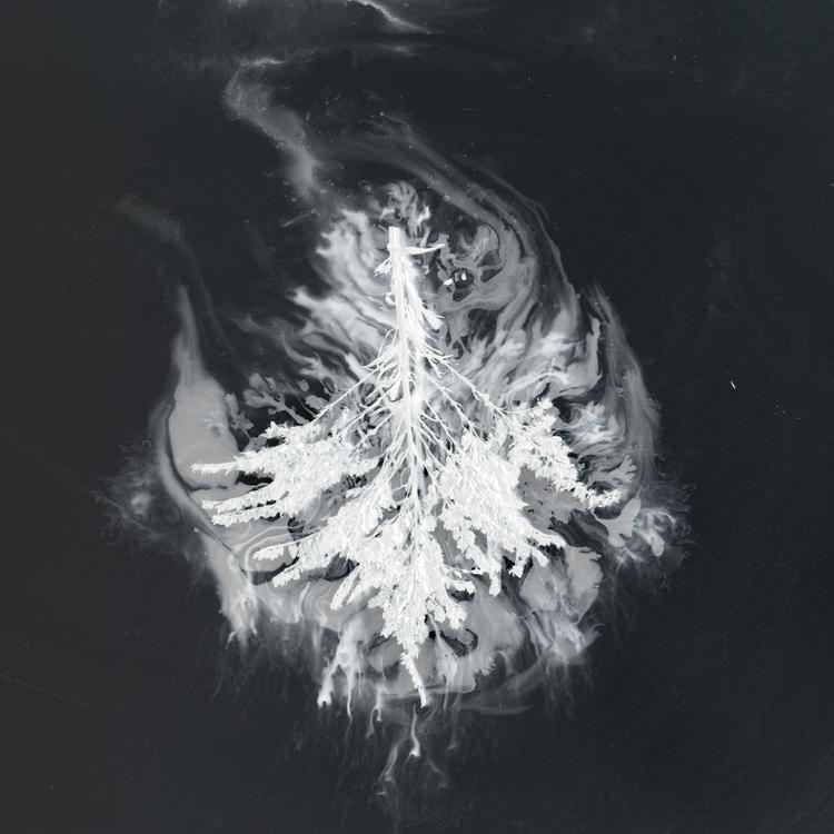 graphic work Seabuckthorn - Tur - gregory_euclide | ello