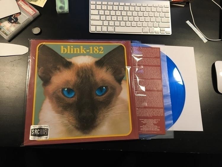 Blue vinyl Blink 182 classic. - stereocthulhu | ello
