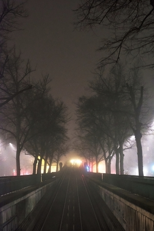 fog. blackandwhitephotography b - freikampf | ello