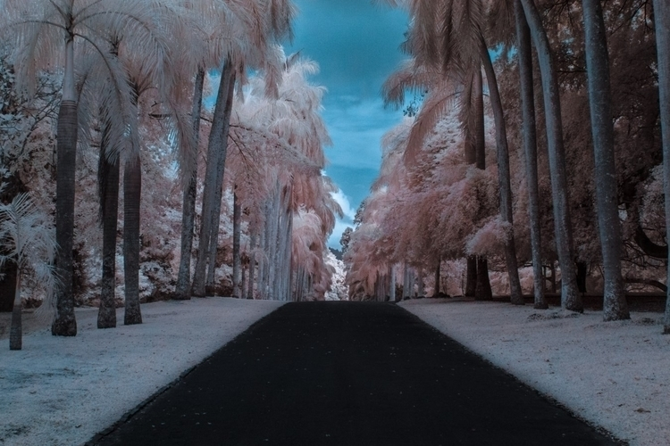 traveling beautiful Landscape S - fabrik | ello
