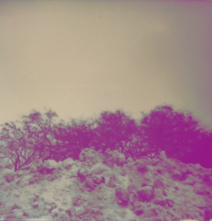 snow pile (purple - polaroid, instantfilm - jkalamarz   ello