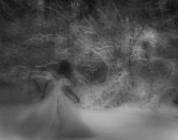 Winter Wonderland | Portrait - sharoncovert - sharoncovert | ello