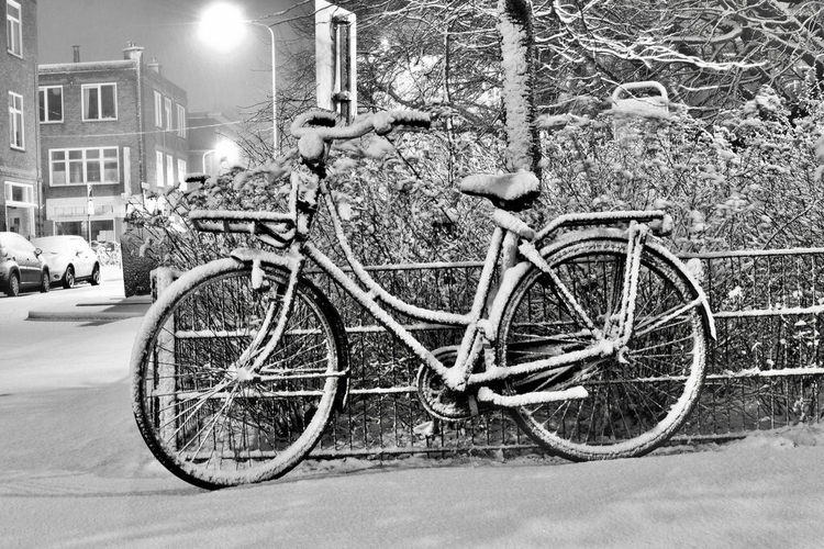 1.17 - mad, picture, bike, snow - rwhfink | ello