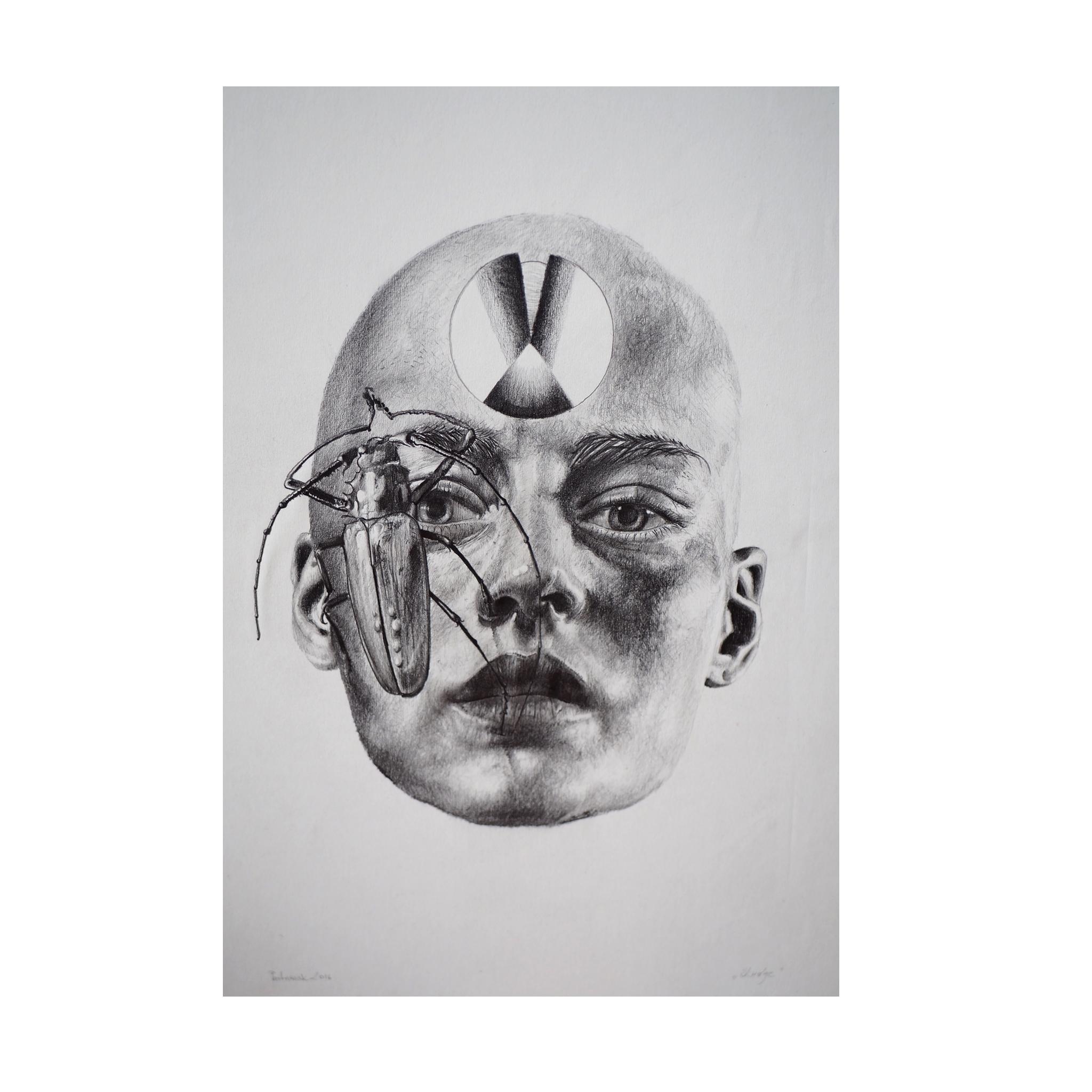 Head Drawing | Sold - pastusiak | ello