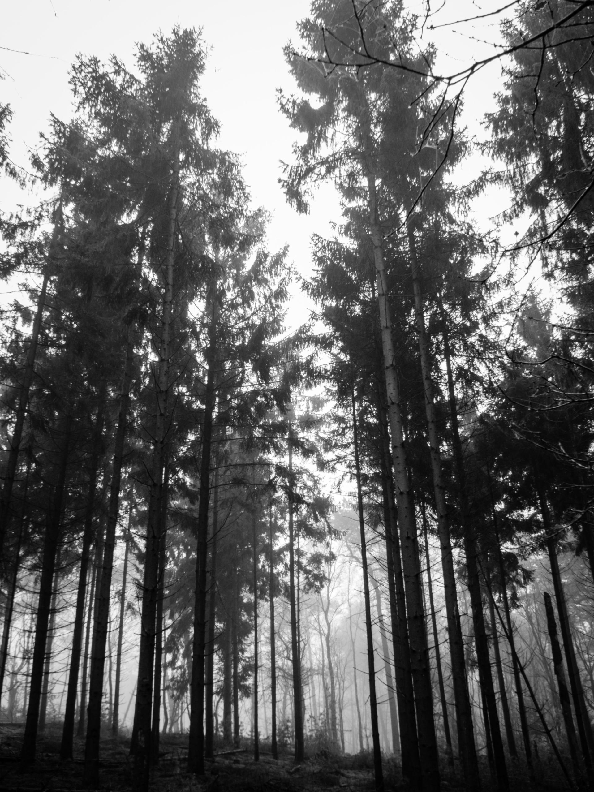 high road - Fujifilm - timondegraaff | ello