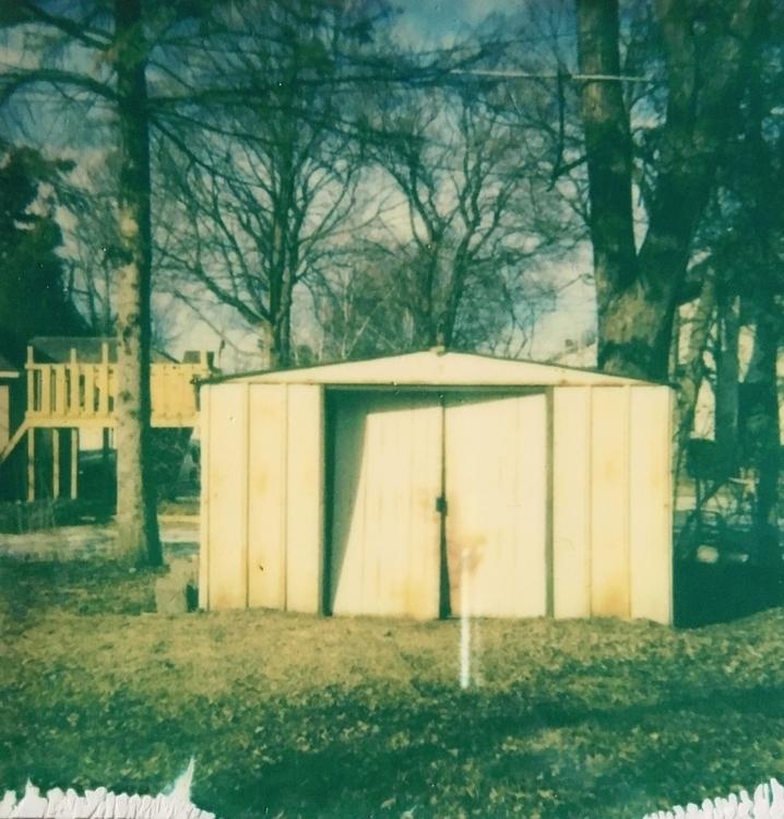 bumblebee - Polaroid, photography - jkalamarz | ello