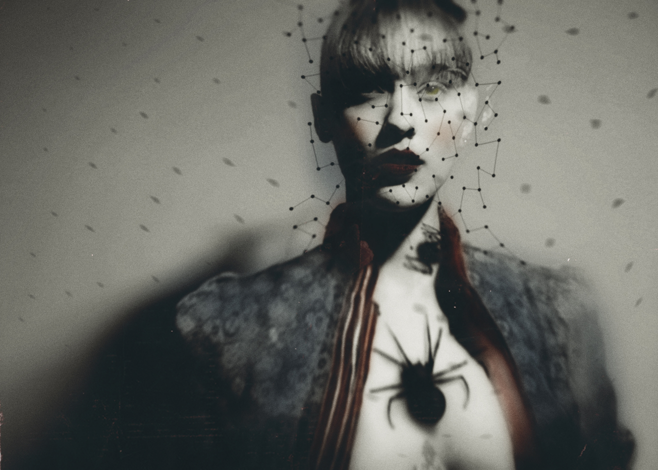 Escape black widow spider mirac - cardinphotography | ello
