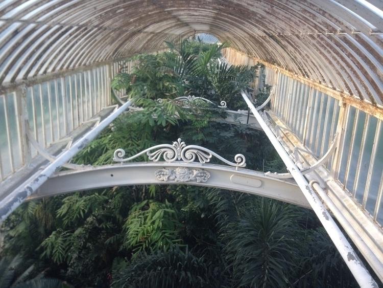 Kew Garden // London 2016 - KewGarden - nitaboni   ello