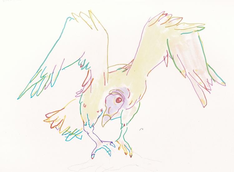 Bestiary 5 Turkey Vulture vultu - jsbeaulieu | ello
