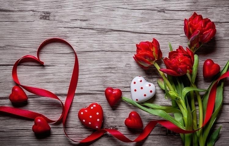 Daily Tulip Tuesday 14th Februa - robert-mcangus | ello