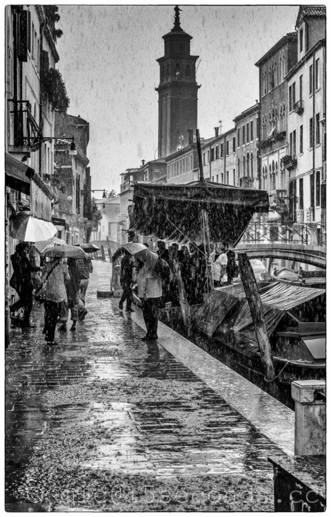 Venice - venice, venise, venezia - mick_inger | ello