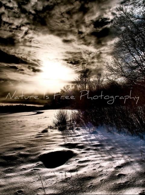 sunshine heart blood sings moun - natureisfree | ello