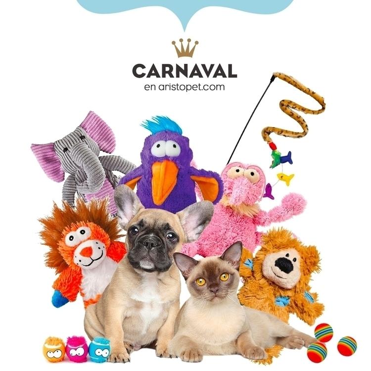 :tada:¡Festeja Carnaval con una - aristopet | ello