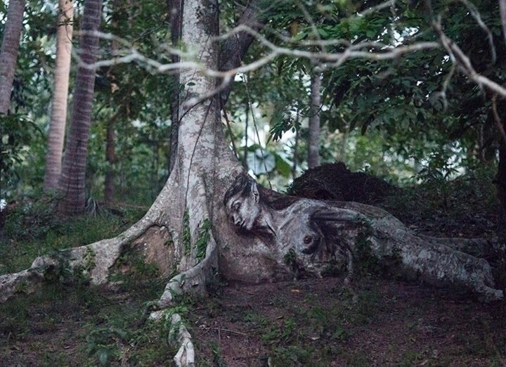 Jungle Art Julia Woolf Location - streetartunitedstates | ello