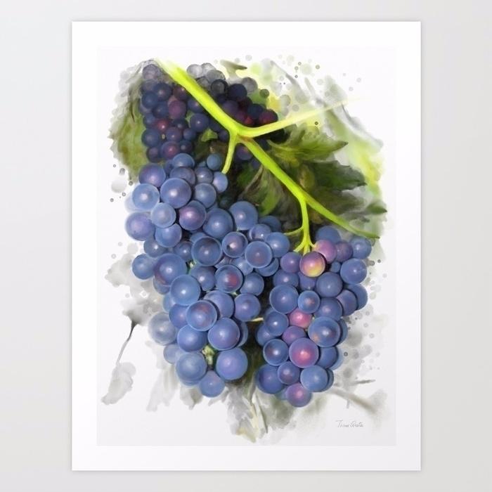 Concord grape - art, watercolor - ivaw | ello
