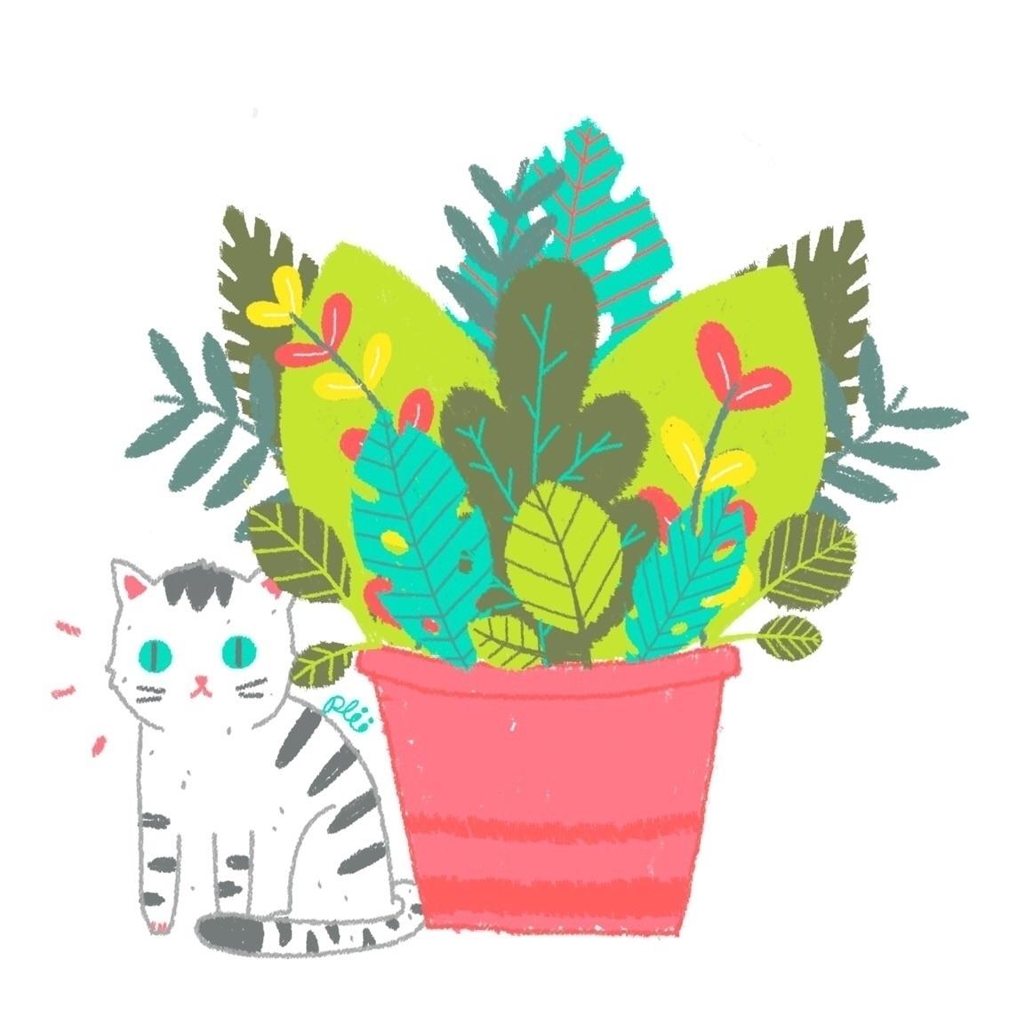 serie Cats plants :heart:️ - cat - caroplii | ello